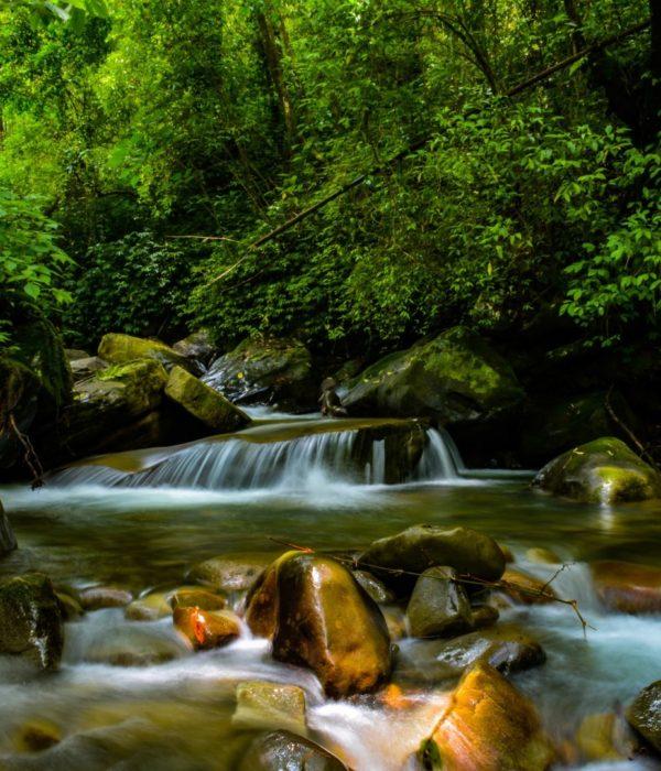 Triple Falls Dimapur Tour